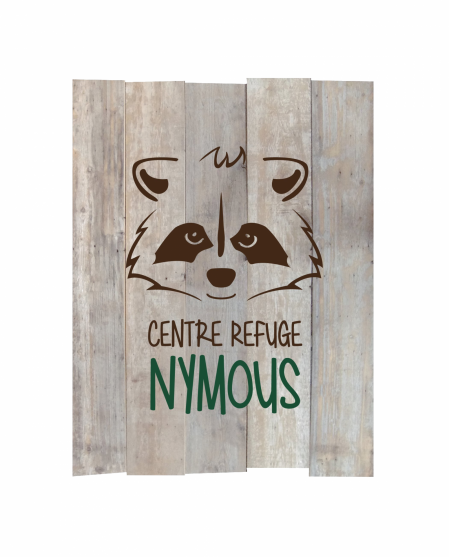Logo nymoustransparent