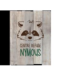 Logo nymoustransparentreduit